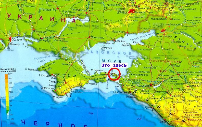 рациона животного азовское море отдых карта картинки его